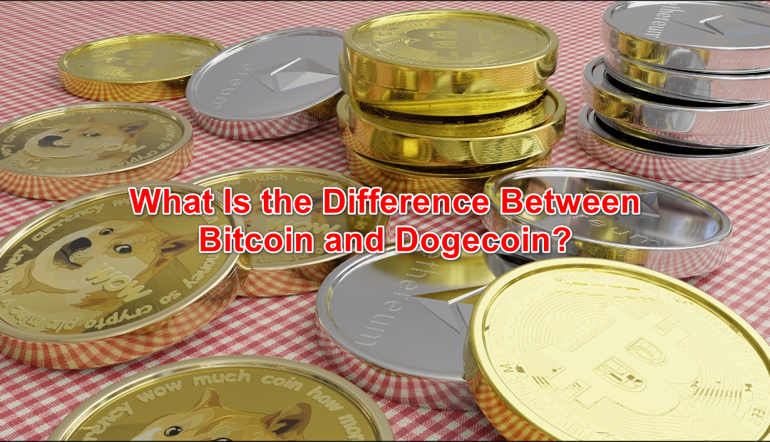 What Is the Difference Between Bitcoin and Dogecoin?
